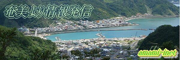 カメラ 徳之島 ライブ